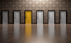 traineeships choices