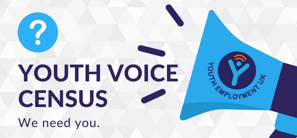 youth voice census landing page banner
