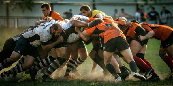 skills teamwork adaptable